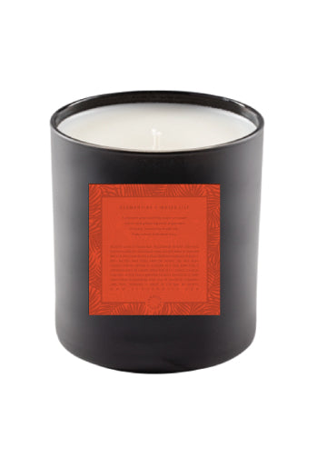 Soy Candle | Clementine + Water Lily - Knotty
