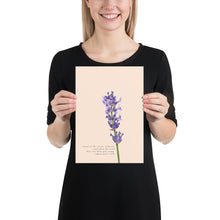 Load image into Gallery viewer, Fine Art Print: Lavender