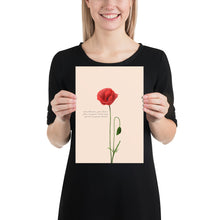 Load image into Gallery viewer, Fine Art Print: Poppy