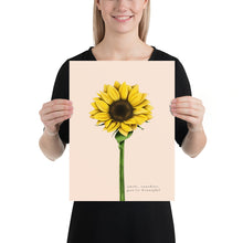Load image into Gallery viewer, Fine Art Print: Sunflower