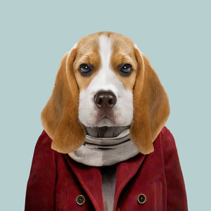 Aaron, the beagle, from the Zoo Portraits animal art series created by Yago Partal. This anthropomorphic artwork is a mix of photography, illustration and collage.