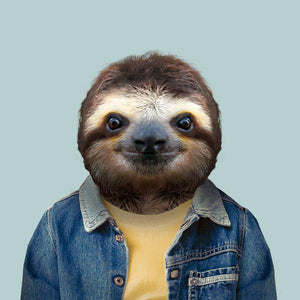 João, the brown-throated sloth, from the Zoo Portraits animal art series created by Yago Partal. This anthropomorphic artwork is a mix of photography, illustration and collage.