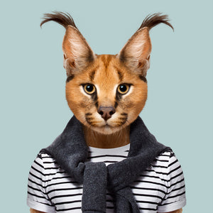 Abakar, the caracal, from the Zoo Portraits animal art series created by Yago Partal. This anthropomorphic artwork is a mix of photography, illustration and collage.