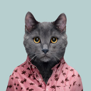 An image of a Chartreux cat, wearing a pink blouse and staring straight at the camera. This image is created by Spanish artist Yago Partal, as part of his Zoo Portraits series of animal art.