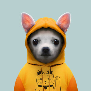 Atom, the chihuahua, from the Zoo Portraits animal art series created by Yago Partal. This anthropomorphic artwork is a mix of photography, illustration and collage.
