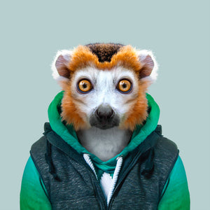 An image of a crowned lemur, gazing straight ahead, wearing a green sweater and a black jacket. This artwork is from the series Zoo Portraits, created by the artist Yago Partal.