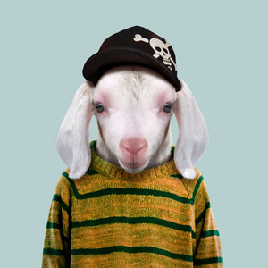 Marco, the domestic goat kid, from the Zoo Portraits animal art series created by Yago Partal. This anthropomorphic artwork is a mix of photography, illustration and collage.