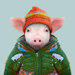 A pig, wearing a woolly hat and warm green jacket, staring straight at the camera. This image is created by Spanish artist Yago Partal, as part of his Zoo Portraits series of animal art.