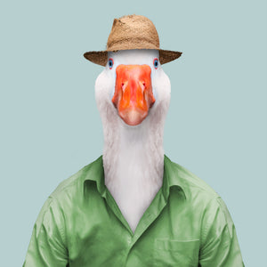 A goose wearing a sunhat and a green shirt, staring straight at the camera. This image is created by Spanish artist Yago Partal, as part of his Zoo Portraits series of animal art.