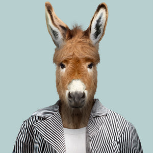 A donkey, wearing a striped jacket and white T-shirt, staring straight at the camera. This image is created by Spanish artist Yago Partal, as part of his Zoo Portraits series of animal art.