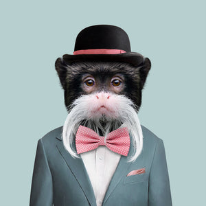 Edwin, the emperor tamarin, from the Zoo Portraits animal art series created by Yago Partal. This anthropomorphic artwork is a mix of photography, illustration and collage.