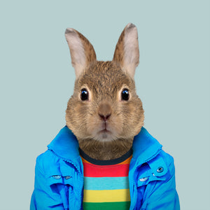 Pedro, the European rabbit, from the Zoo Portraits animal art series created by Yago Partal. This anthropomorphic artwork is a mix of photography, illustration and collage.