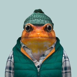 A false tomato frog, wearing a checked shirt, green cap and green jacket, staring straight at the camera. This image is created by Spanish artist Yago Partal, as part of his Zoo Portraits series of animal art.