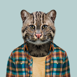Hansh, the fishing cat, from the Zoo Portraits animal art series created by Yago Partal. This anthropomorphic artwork is a mix of photography, illustration and collage.