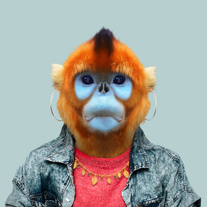Hui, the golden monkey, from the Zoo Portraits animal art series created by Yago Partal. This anthropomorphic artwork is a mix of photography, illustration and collage.