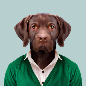 An image of a labrador retriever, wearing a pink shirt and green cardigan, staring straight at the camera. This image is created by Spanish artist Yago Partal, as part of his Zoo Portraits series of animal art.