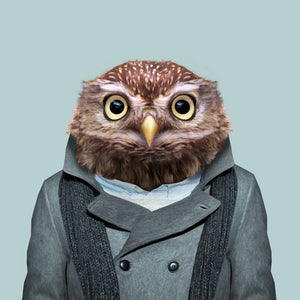 Alfie, the little owl, from the Zoo Portraits animal art series created by Yago Partal. This anthropomorphic artwork is a mix of photography, illustration and collage.