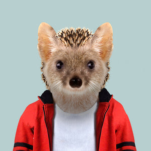 Fritz, the long-eared hedgehog, from the Zoo Portraits animal art series created by Yago Partal. This anthropomorphic artwork is a mix of photography, illustration and collage.