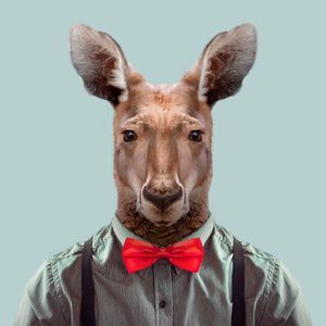 Peter, the red kangaroo, from the Zoo Portraits animal art series created by Yago Partal. This anthropomorphic artwork is a mix of photography, illustration and collage.