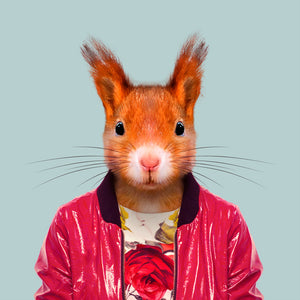 Saija, the red squirrel, from the Zoo Portraits animal art series created by Yago Partal. This anthropomorphic artwork is a mix of photography, illustration and collage.