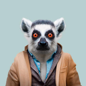Wesley, the ring-tailed lemur, from the Zoo Portraits animal art series created by Yago Partal. This anthropomorphic artwork is a mix of photography, illustration and collage.