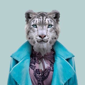 Aiperi, the snow leopard, from the Zoo Portraits animal art series created by Yago Partal. This anthropomorphic artwork is a mix of photography, illustration and collage.