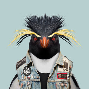 A southern rockhopper penguin, wearing an embellished denim jacket, staring straight at the camera. This image is created by Spanish artist Yago Partal, as part of his Zoo Portraits series of animal art.