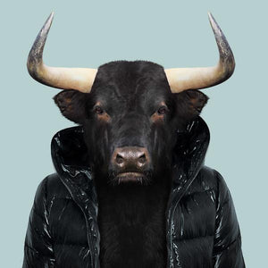 Fernando, the Spanish bull, from the Zoo Portraits animal art series created by Yago Partal. This anthropomorphic artwork is a mix of photography, illustration and collage.