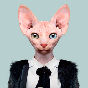 A sphynx cat, wearing a black furry jacket, white shirt and black tie, staring straight at the camera. This image is created by Spanish artist Yago Partal, as part of his Zoo Portraits series of animal art.
