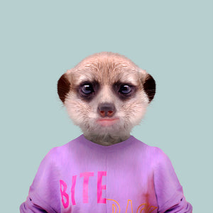 A suricate, or meerkat, wearing a purple T-shirt and staring straight at the camera. This image is created by Spanish artist Yago Partal, as part of his Zoo Portraits series of animal art.