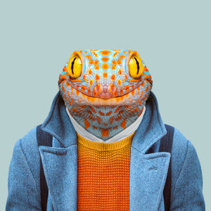 Druk, the tokay gekko, from the Zoo Portraits animal art series created by Yago Partal. This anthropomorphic artwork is a mix of photography, illustration and collage.