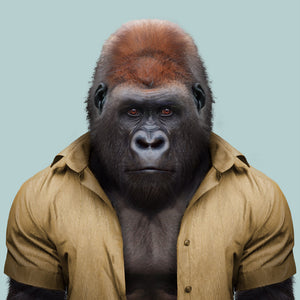 Awax, the western lowland gorilla, from the Zoo Portraits animal art series created by Yago Partal. This anthropomorphic artwork is a mix of photography, illustration and collage.