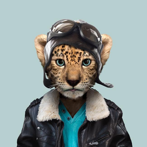 Jeong, the Amur leopard, from the Zoo Portraits animal art series created by Yago Partal. This anthropomorphic artwork is a mix of photography, illustration and collage.