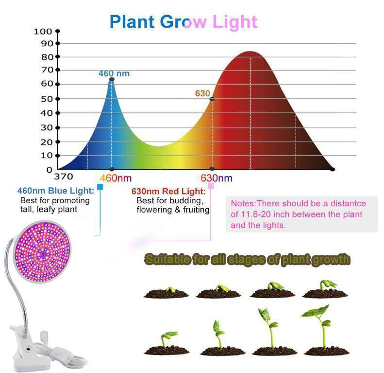 Indoor Plants Growth Light