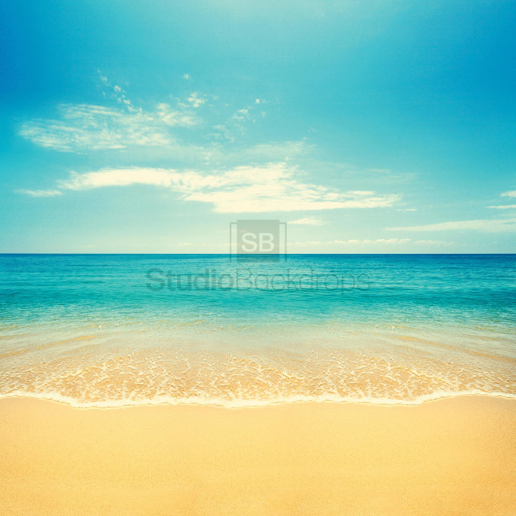 Beach Scene Photography Backdrop
