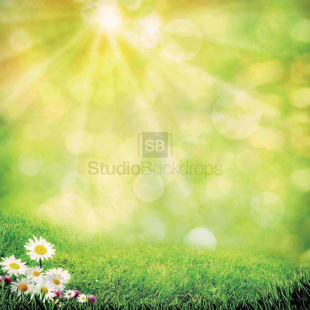 Summer Meadow Photography Backdrop