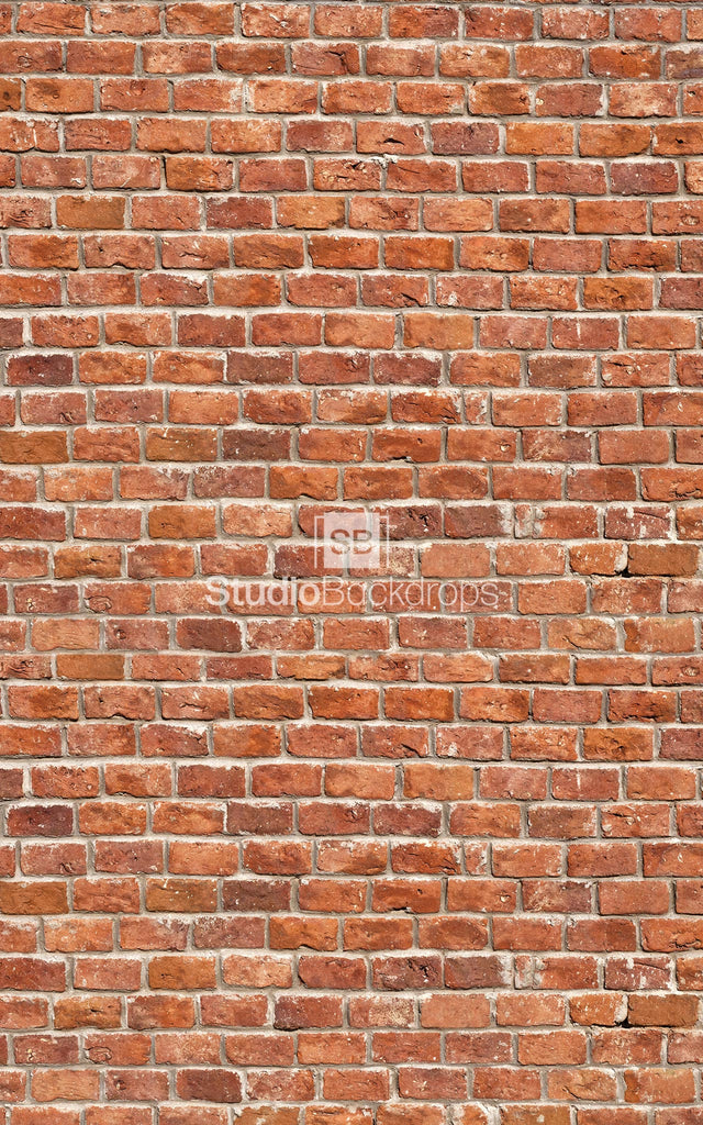 Traditional Brick Wall Photography Backdrop BD-236-STB