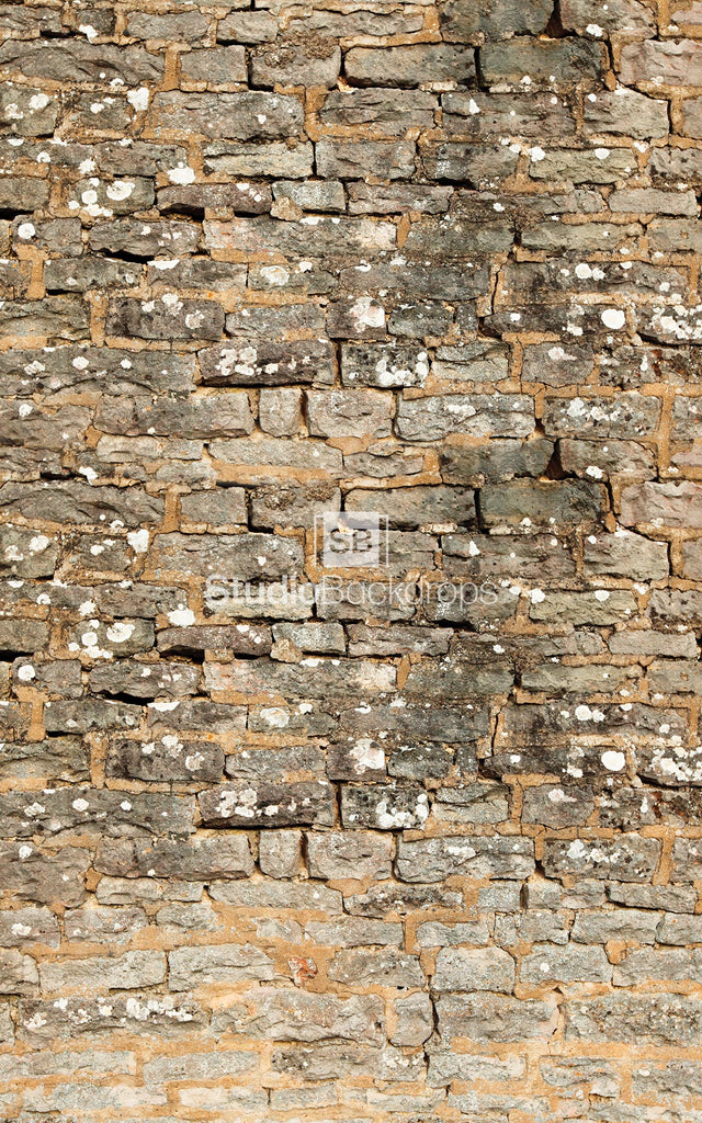 Old Stone Wall Photography Backdrop