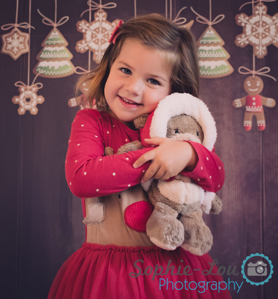 Christmas Decorations Photography Backdrop BD-204-SCE