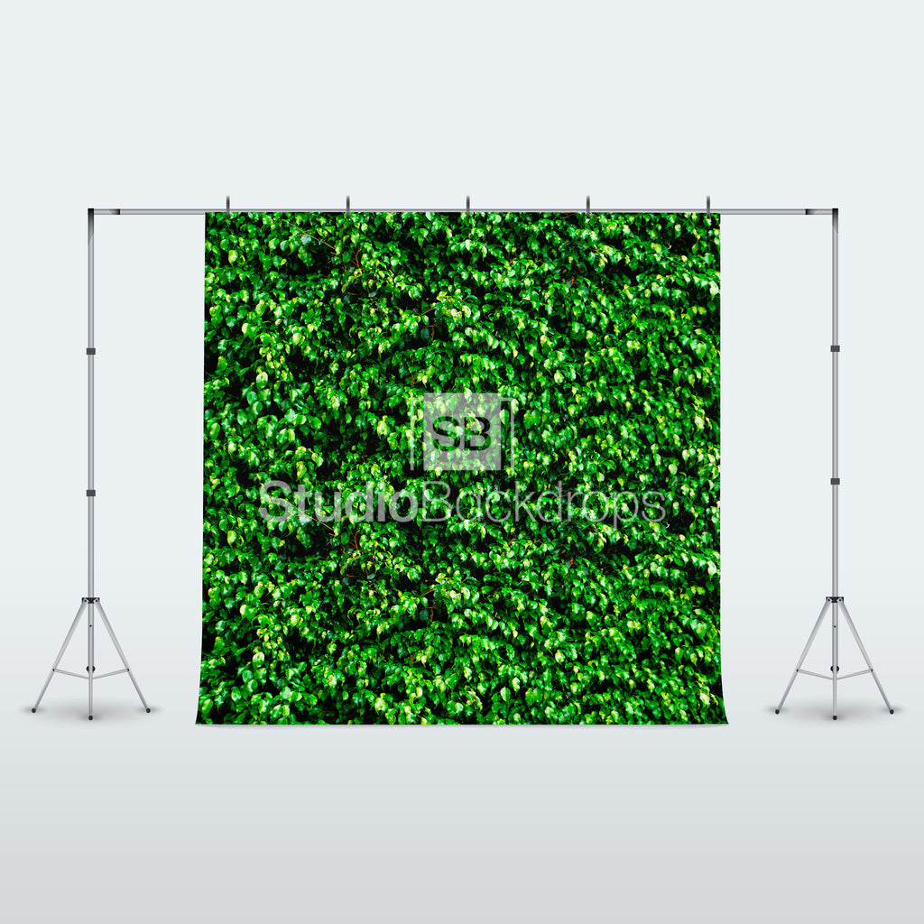Green Leaves Photography Backdrop