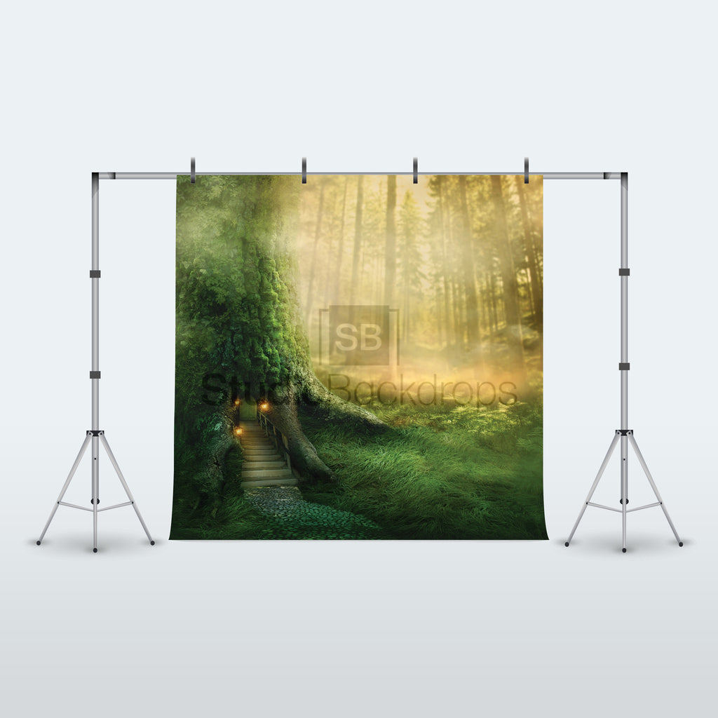 Enchanted Forest Photography Backdrop