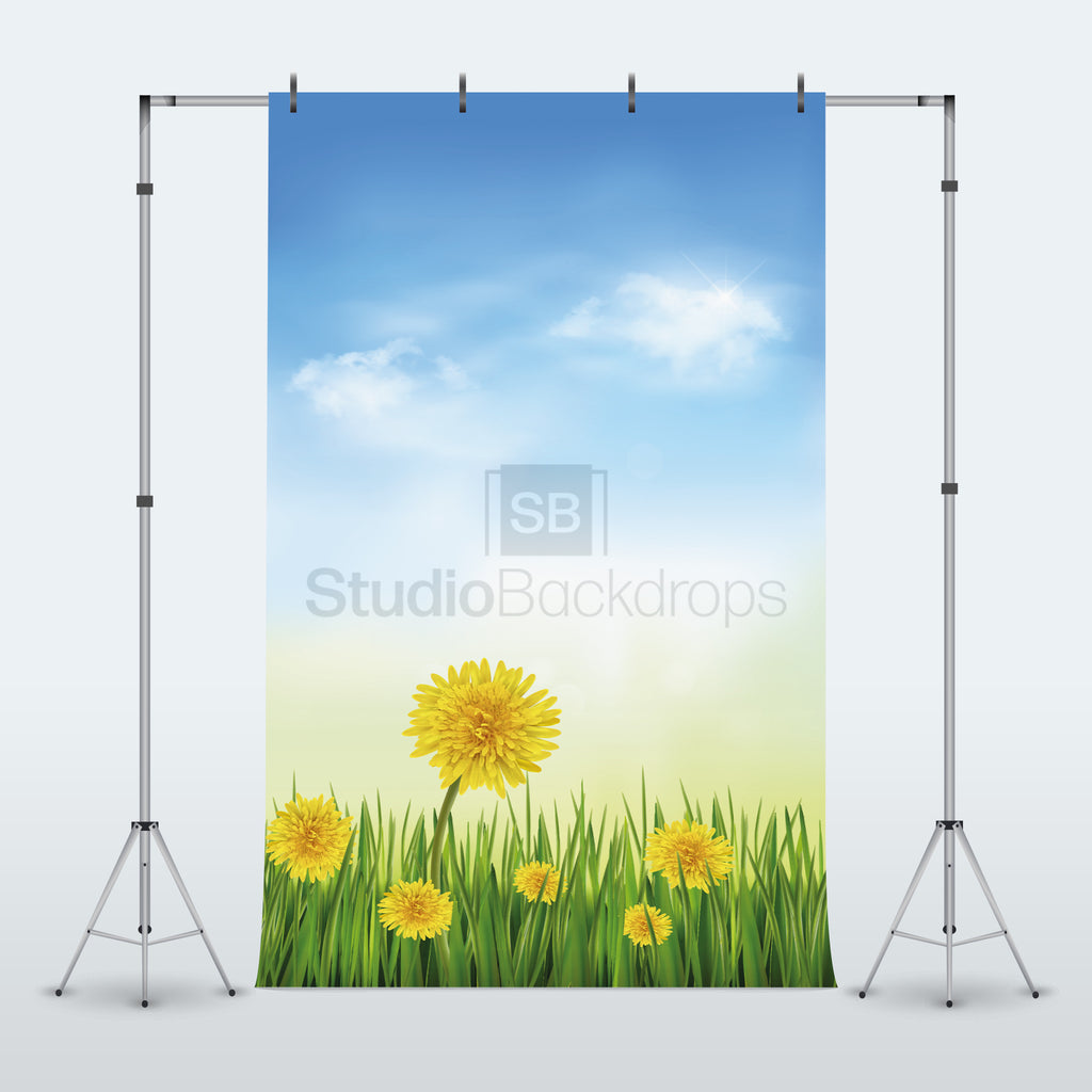 Spring Dandelions Photography Backdrop