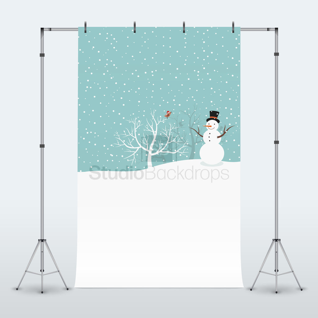 Snowman and Bird Photography Backdrop