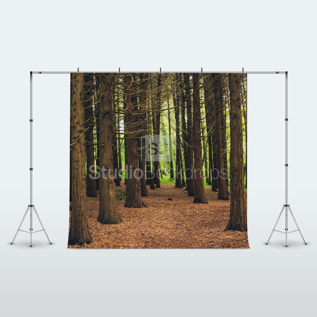Woodland Forest Photo Booth Backdrop Studio Backdrops