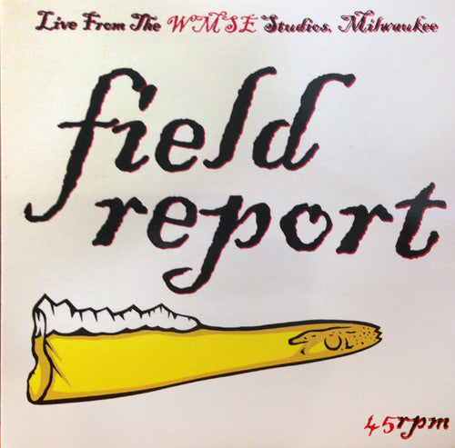 "Field Report 7"" Vinyl Record"