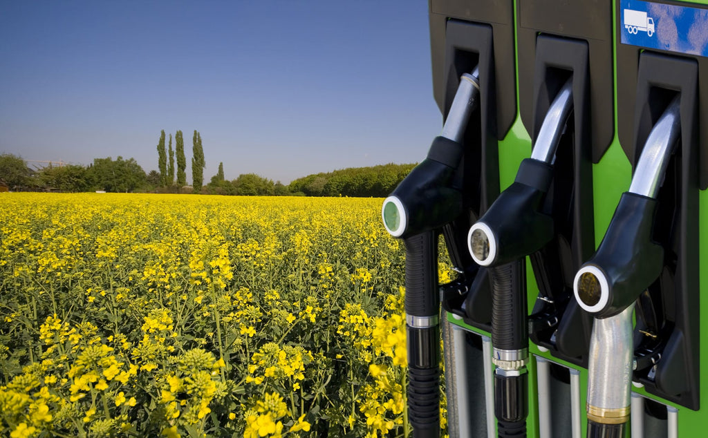 What Is Biodiesel and Can You Use It in Your Diesel Truck?