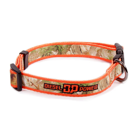 DP Camo Dog Collar