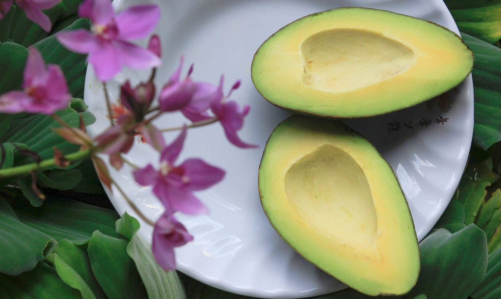 Skin Superfood | The Power of Avocado Oil