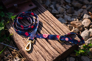 Gentle Pup - Playful Polly Dog Leash