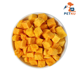 FD Treats - Freeze Dried Pumpkin